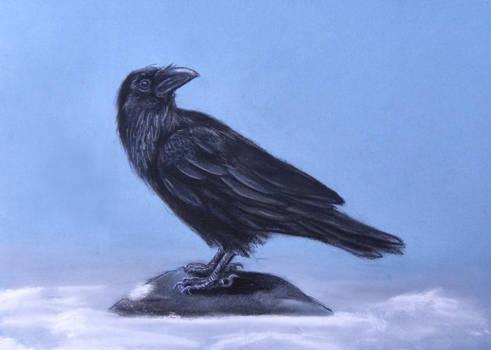Finished! Raven- Skarbog