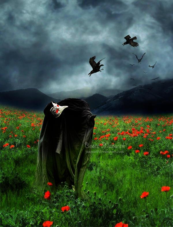 6 - Crow by Jaagaa
