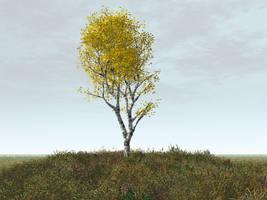 Dark Fall Day by silversword9