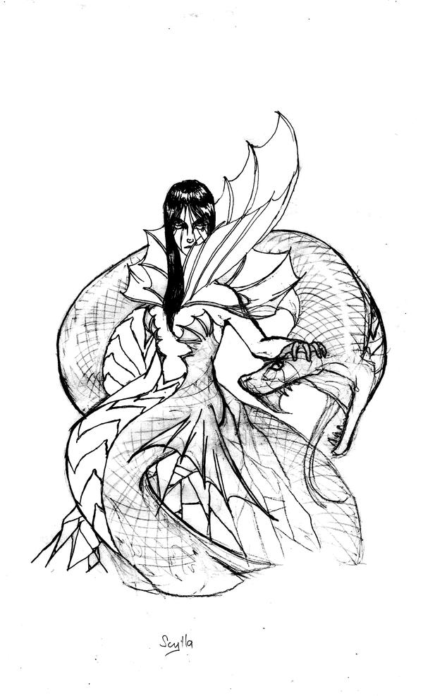 scylla sketch picture scylla sketch image