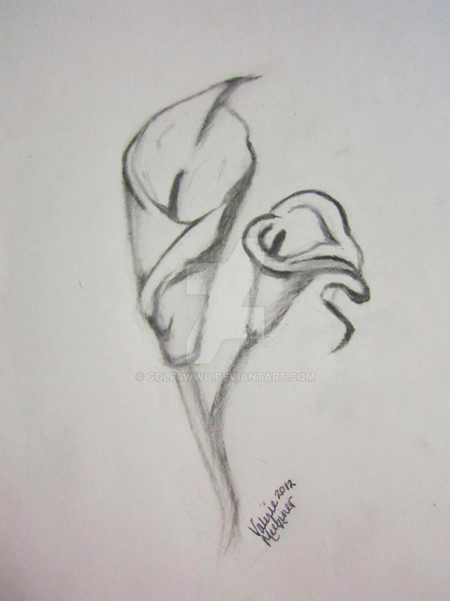 calla lily flower by golf4wwu calla lily flower by golf4wwu