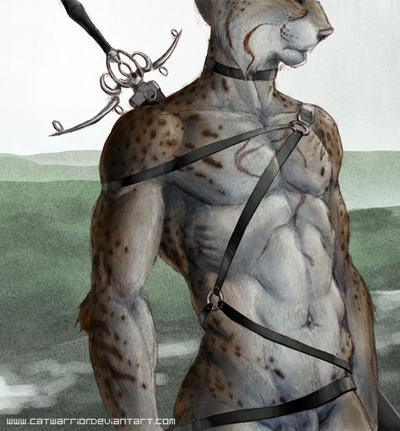 CatWarrior's Profile Picture