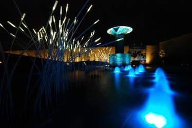 pond of lights
