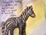 For Zebra Keepers