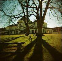 solitude -2008- by zuckerfuss