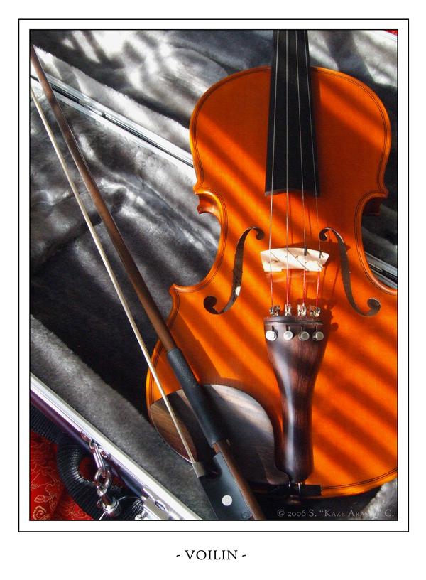 Violin by wind-box