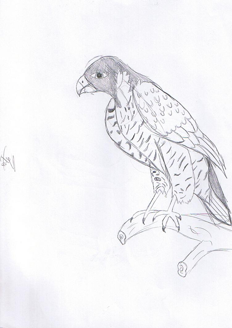 bird7_by_rita_and_skipper-d76oioh.png