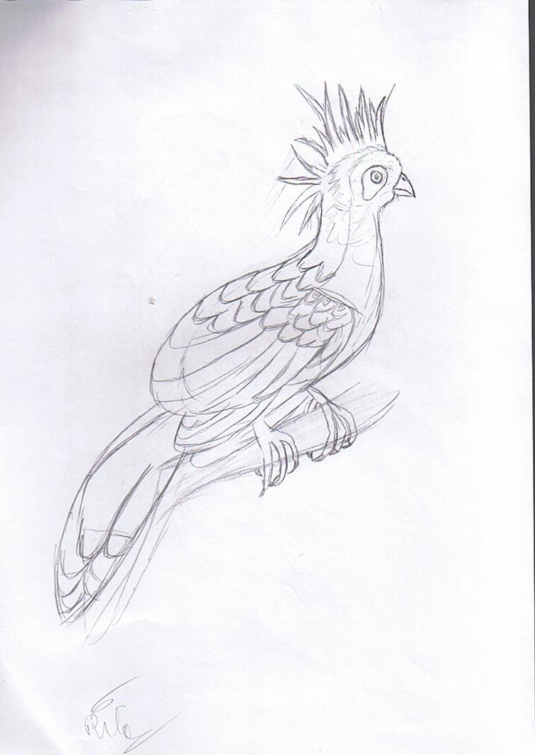 bird6_by_rita_and_skipper-d76oix8.png