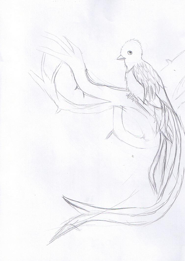 bird5_by_rita_and_skipper-d76oizt.png