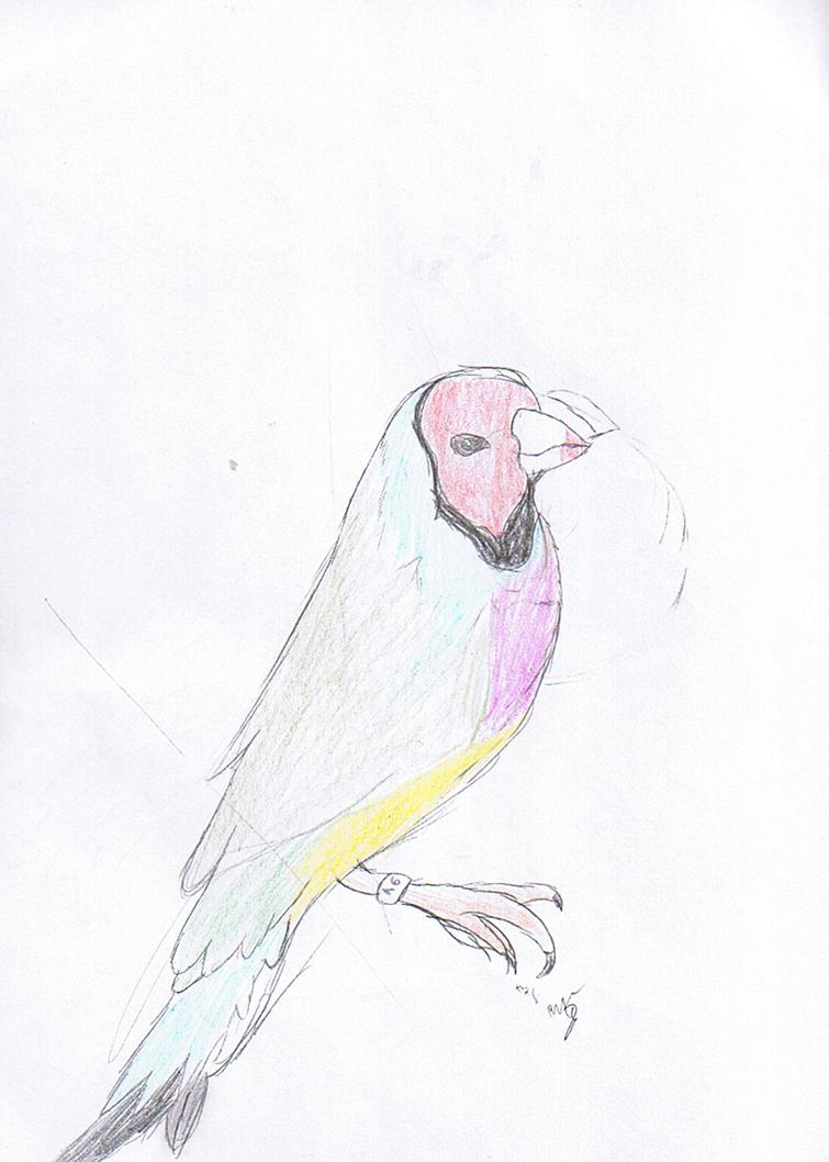 bird2_by_rita_and_skipper-d76ojjj.png
