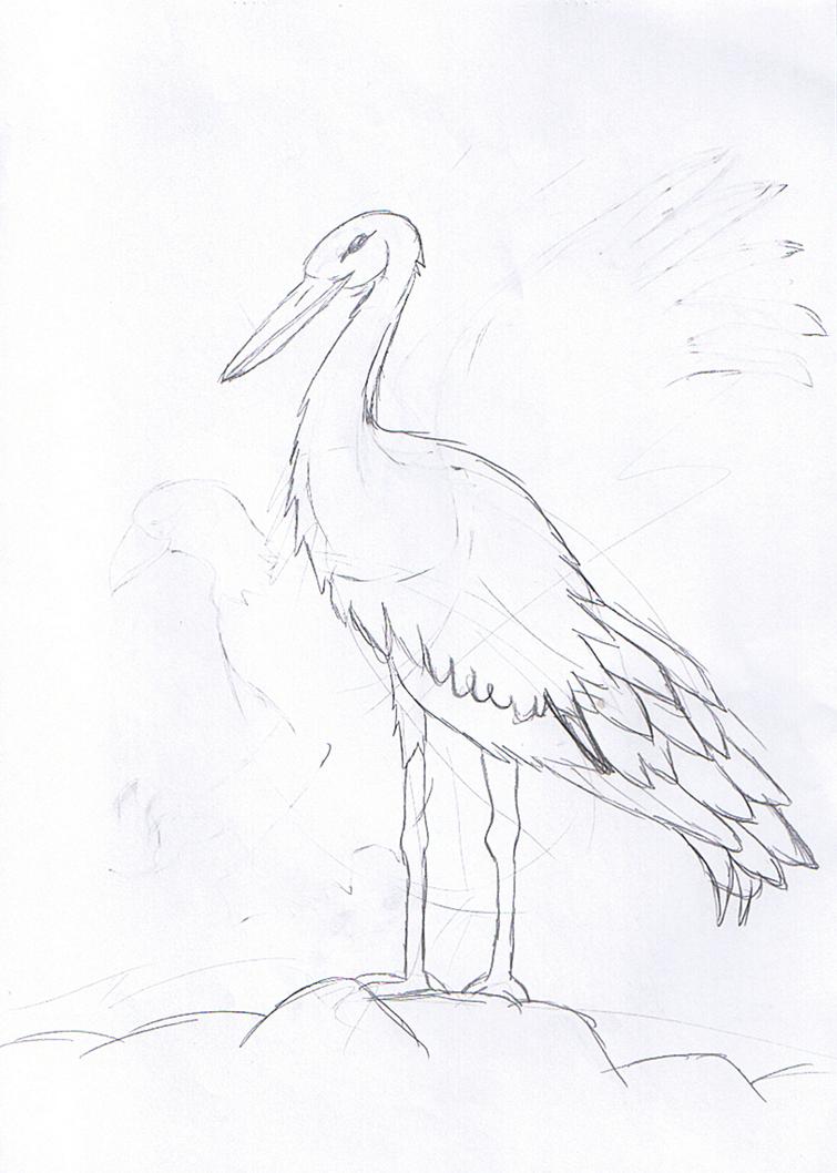 bird1_by_rita_and_skipper-d76ojkh.png