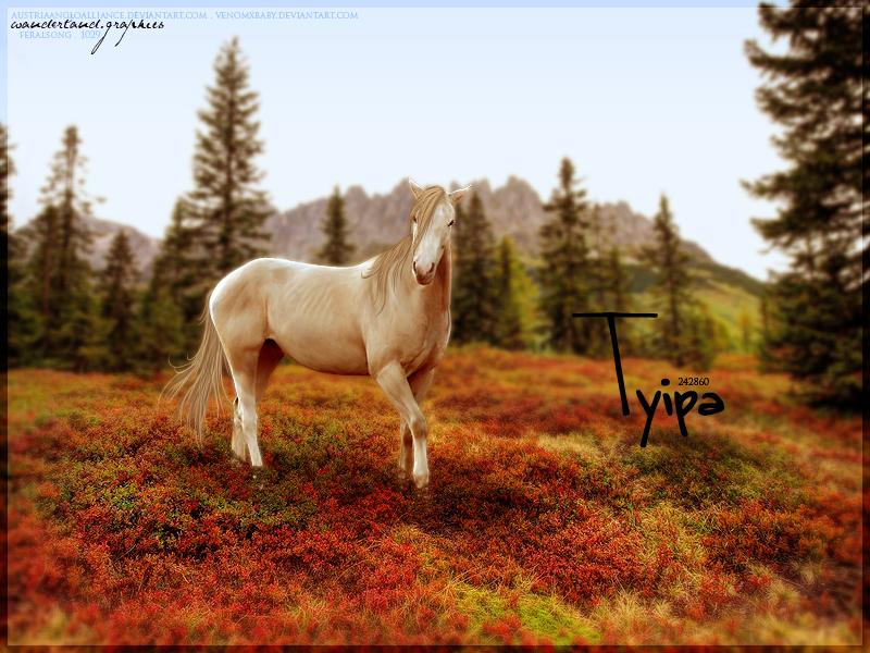 Tyipa by Fera1029