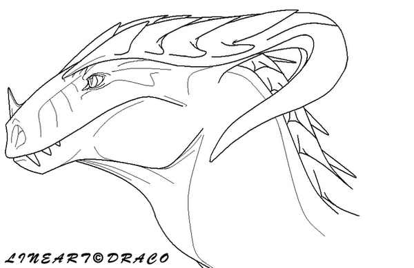 Angel Face Line Drawing : Dragon head lineart by dracofeathers on deviantart