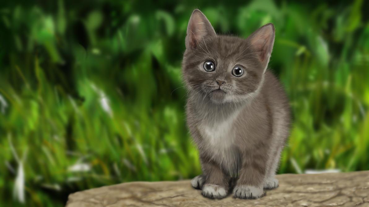 digital painting - Cat (Katze) by dasflon