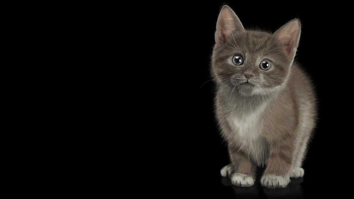 painted Wallpaper - Cat (Katze) by dasflon