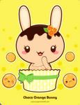 Chocolate Orange Truffle Bunny