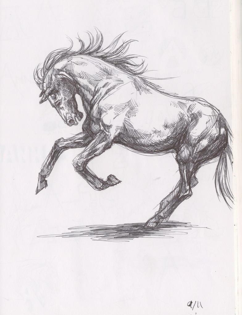 pony sketch by Anniez19