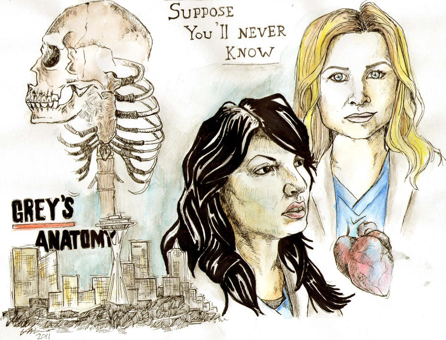 Drawing Lines Grey S Anatomy : Arizona and callie by sukeltajapanda on deviantart