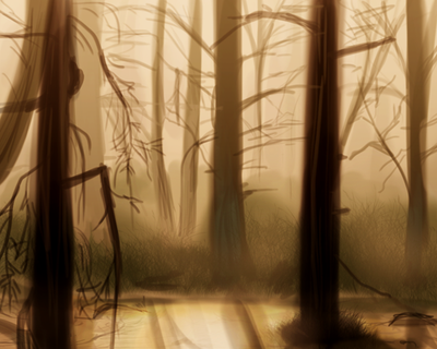 Morning in the forest. by Suzamuri
