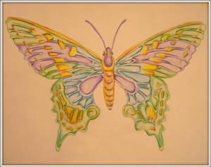 Vivians Butterfly