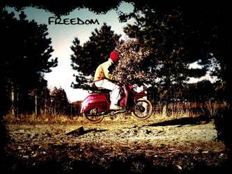 Freedom by Weitzen