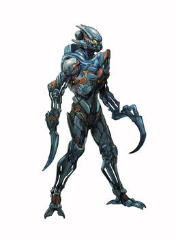 Gali Water Warrior