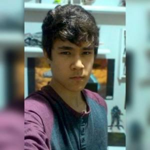 Finofauro's Profile Picture