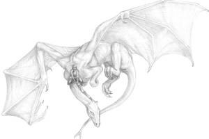 Wheel n Turn or Bleed n Burn by bronze-dragonrider