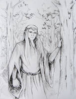 The Elvenking by AnotherStranger-Me