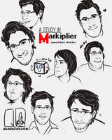 A Study in Markiplier (ft. Google Images) by quwack-duck