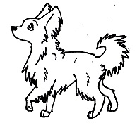 Chihuahua line art SDN by Wolfs-Hybrid