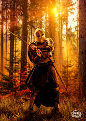 Medieval Cavalry - Caballero Medieval
