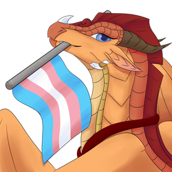 Scorch Says Trans Rights!