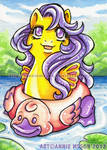 ACEO Baby Sea Star