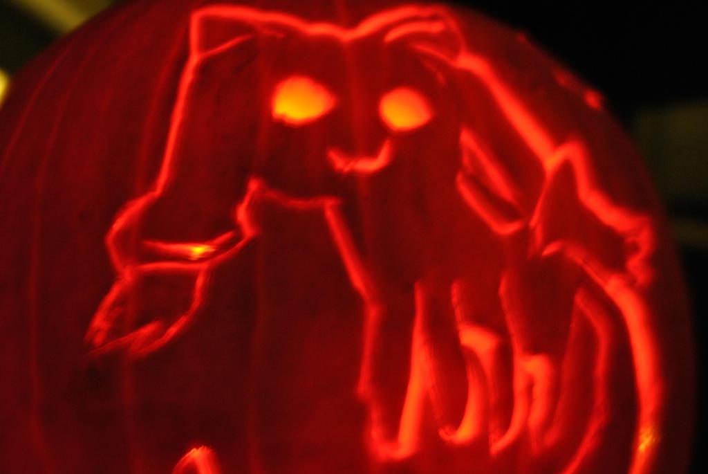 Contract? (Kyubey pumpkin from Halloween 2K13) by Gellert-Grindelwald