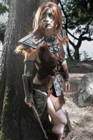 Aela the huntress by Wildyama