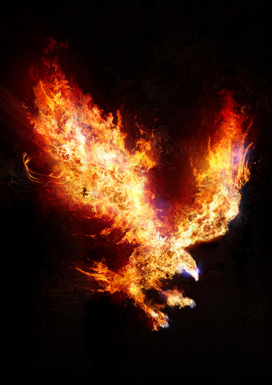 fire_eagle_by_kyz-d5j33ol.jpg