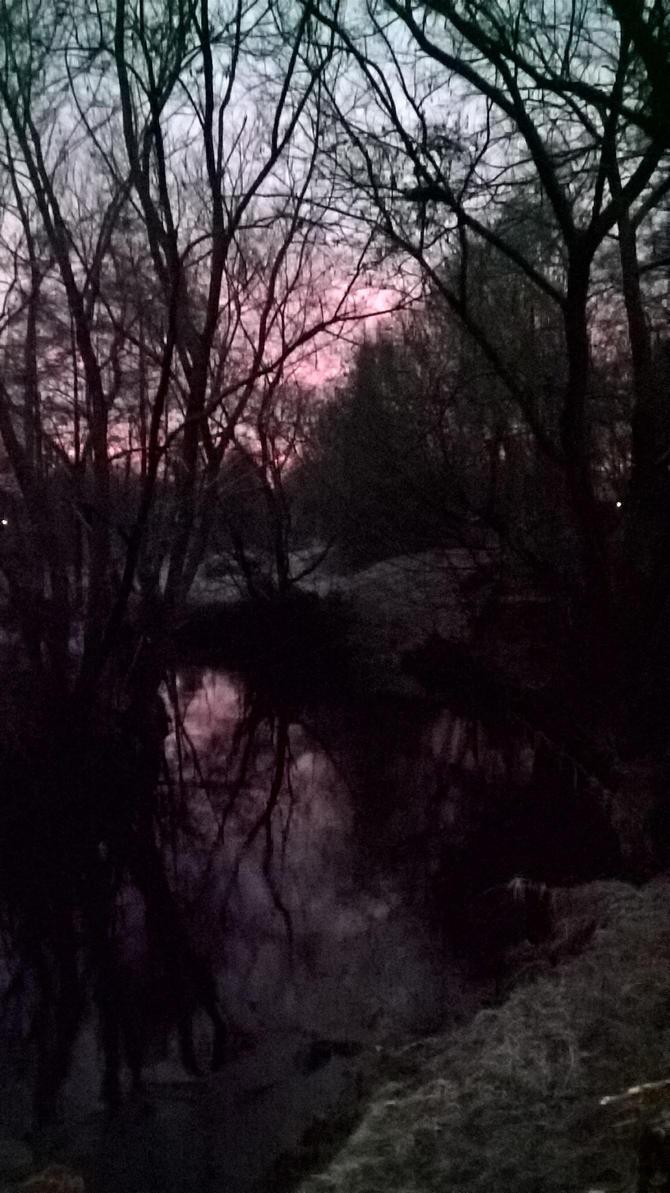 River mirror by Kalkleiste