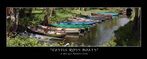 Castle Ross Boats