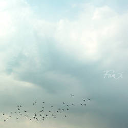 Flee.. by FamiAlhashemi