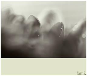 UnClear Inside. by FamiAlhashemi