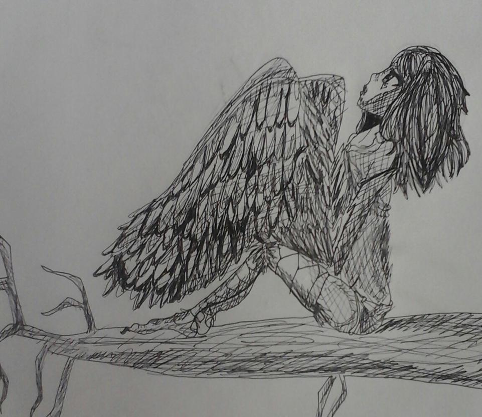 Pen Harpy by HimedereJellyfish