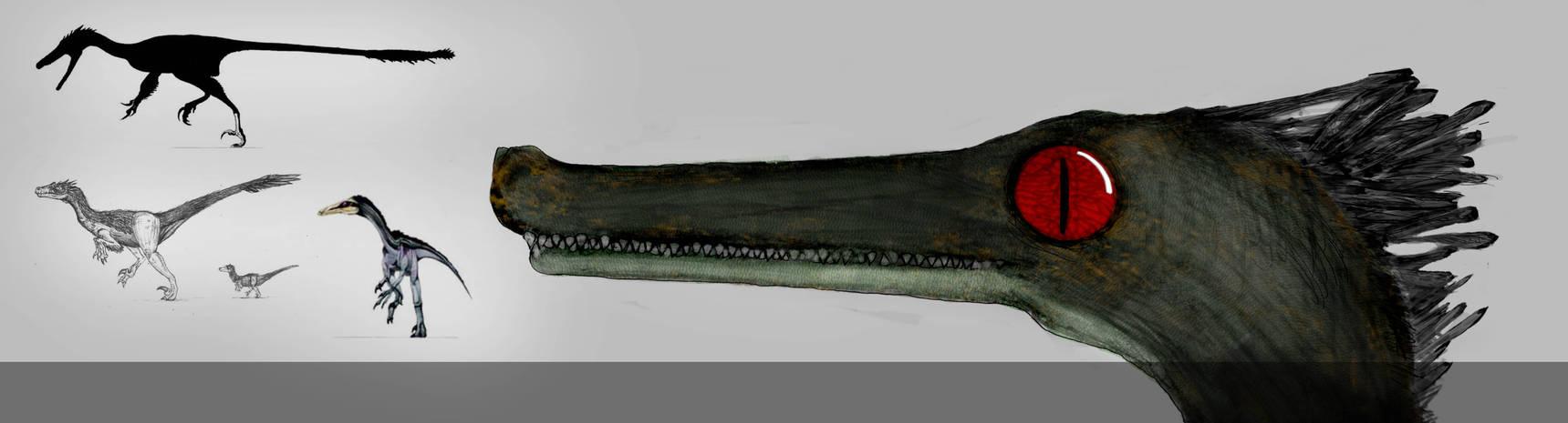Neuquenraptor concept by ArTomsey