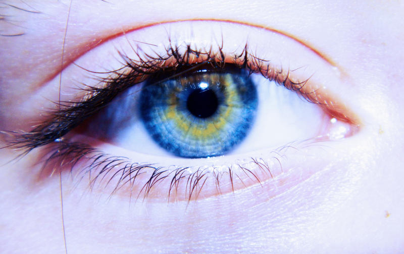 Yellow - blue eyes by Silvia-Pp