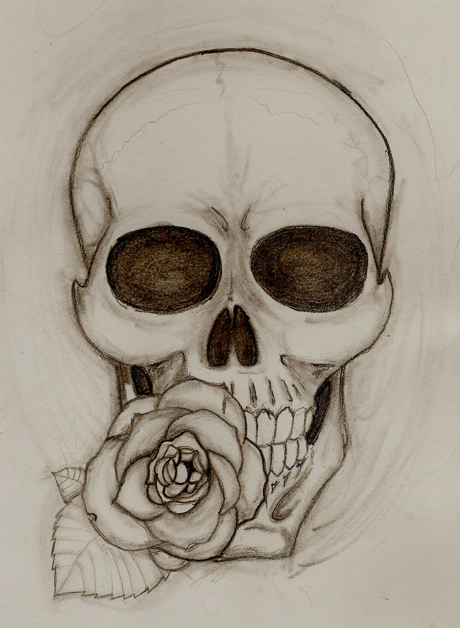 It is a photo of Breathtaking Drawing Of Skulls And Roses