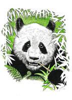 Panda by Snake-Artist