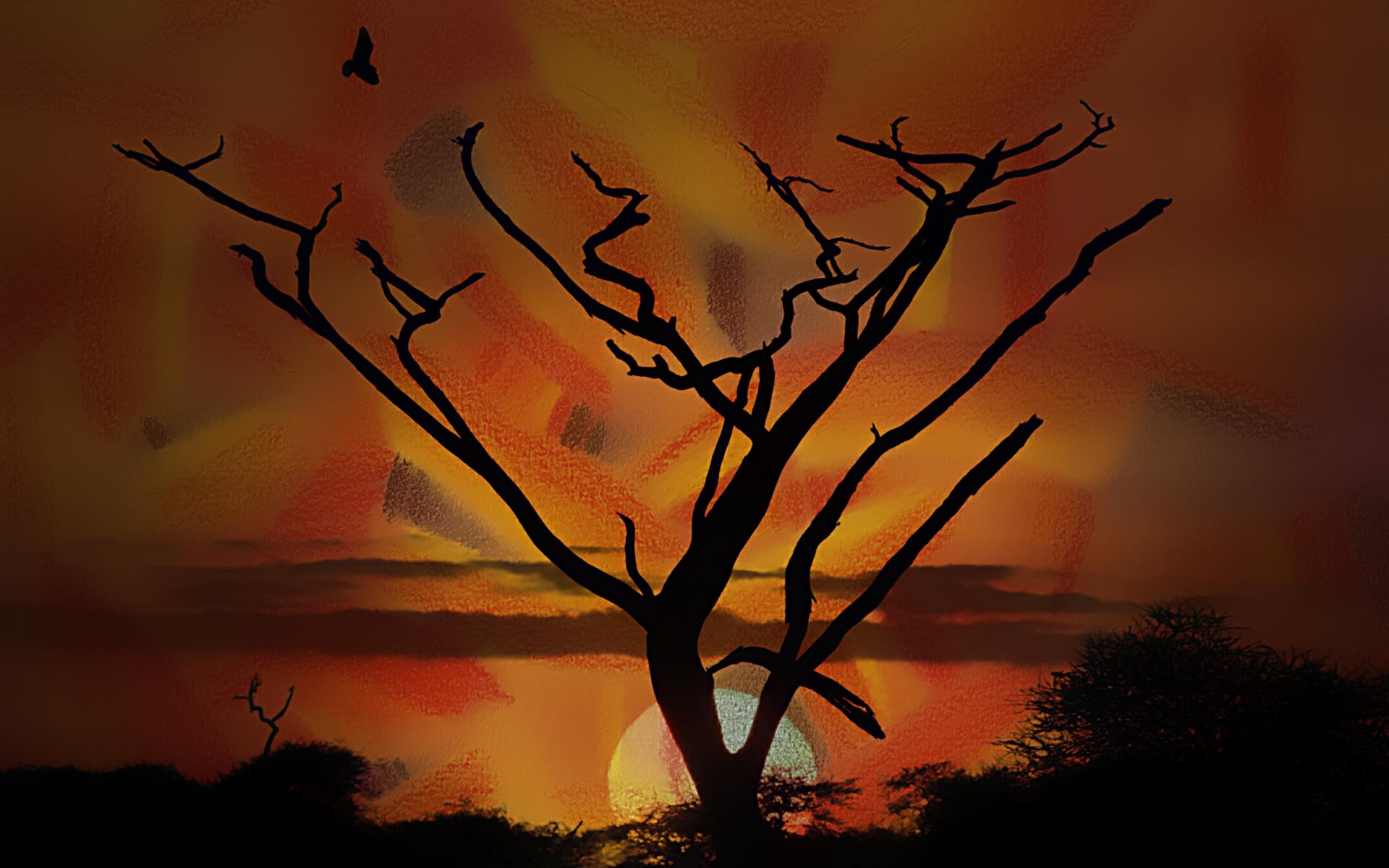 onetree by nucu