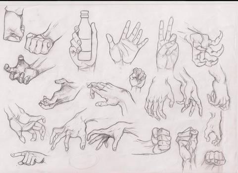 hands studies 5