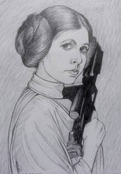 Leia tribute by ultraseven81