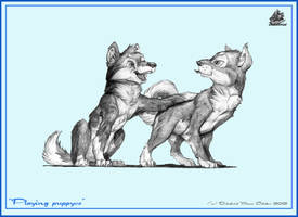 Plaing puppyes by DekabristMouse